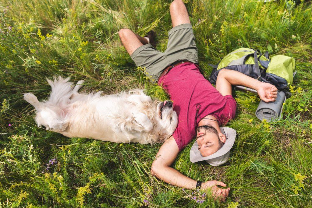 מישהו נח עם כלב