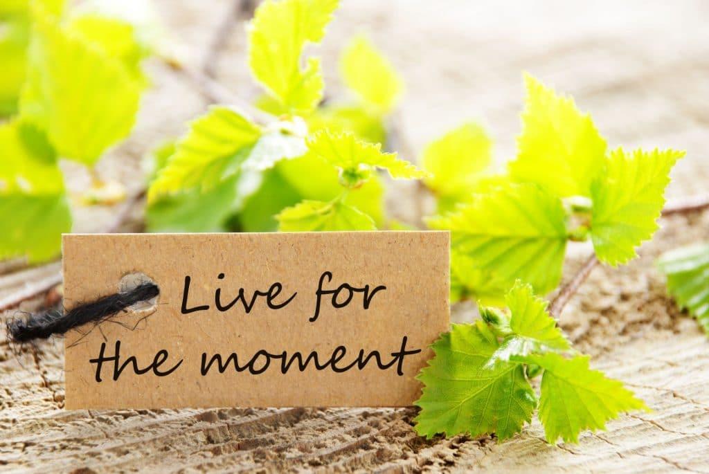 תהנו בחיים כל עוד אפשר
