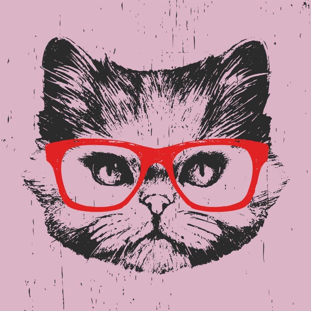 חתול במשקפיים - חשיבה יצירתית